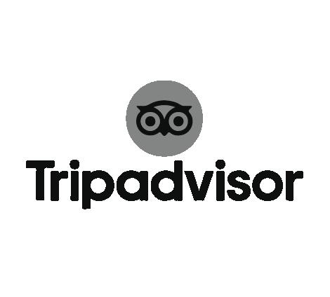 tripadvisor-jump